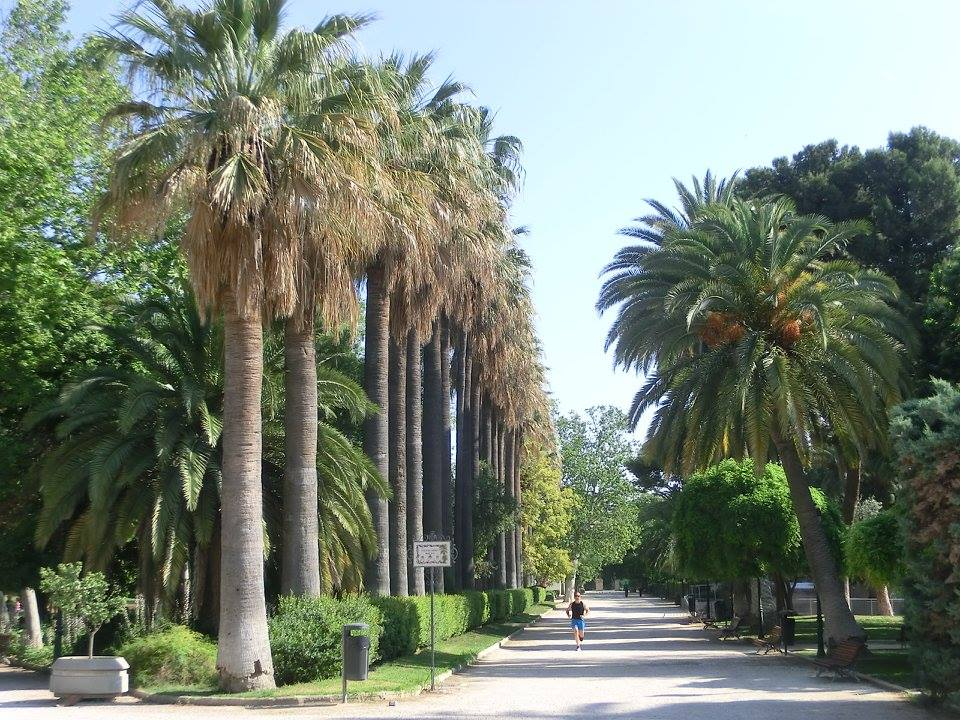 Paisajismo-arquitectura-del-paisaje-viveros-valencia