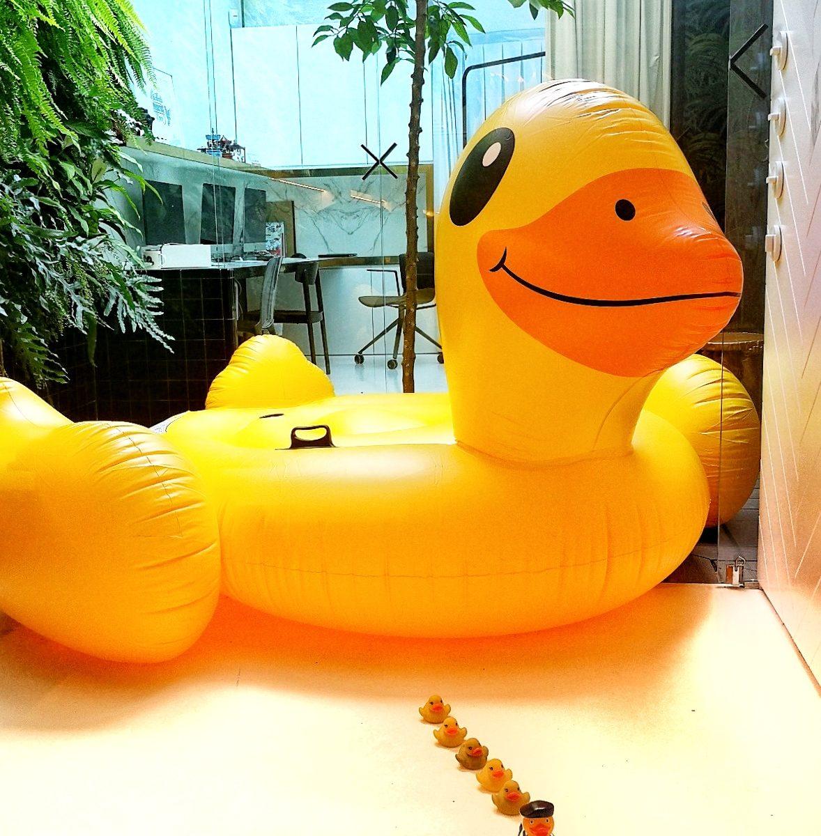 sorteo de verano pato hinchable